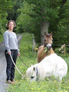Coaching med häst