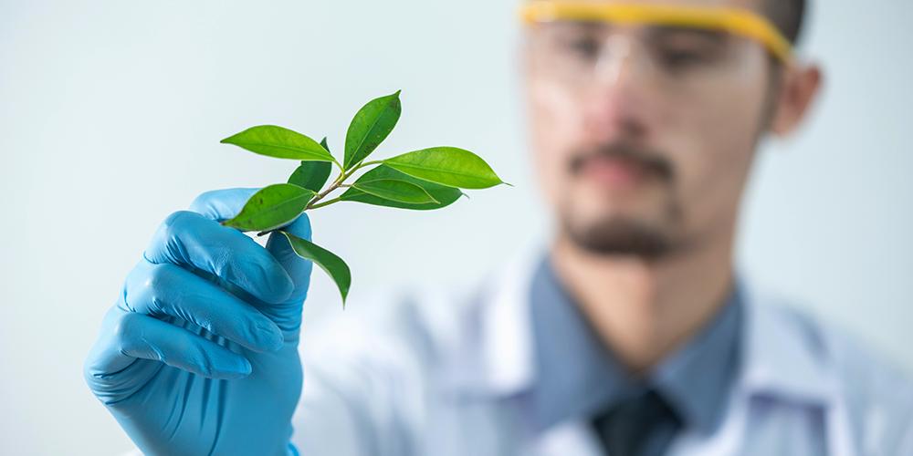 Naturvetenskap & Miljö