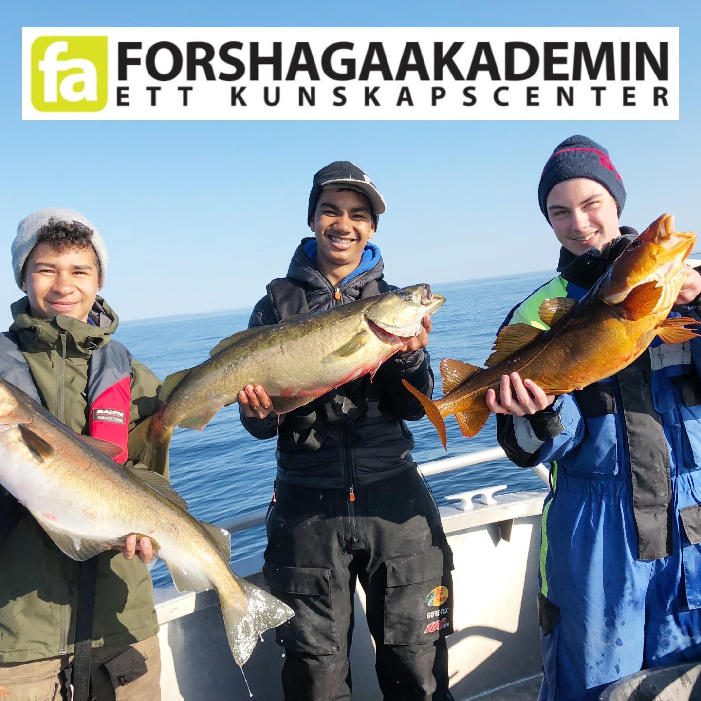 Sveriges bästa gymnasium Sportfiske gymnasieutbildning