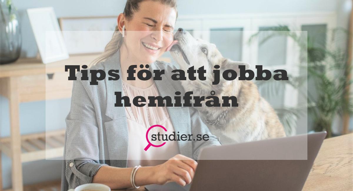 Tips för dig som jobbar hemifrån